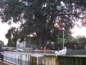 18 Panchakki moulin à eau