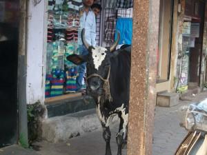 4 rue de Bombay