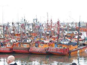 Mar del Plata le port