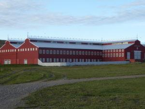 Estancia Maria Behety le hangar de tonte des moutons
