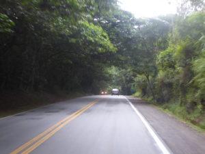 la Costa Verde traversée par une immense forêt très dense