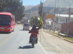 transport de fleurs