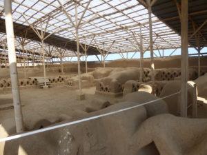Chan Chan labyrinthe parmi les habitations