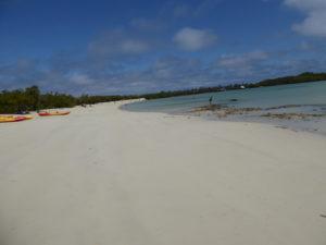 la plage de Tortuga Bay