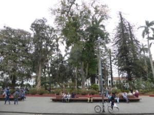 la place principale appelée : Parque Caldas
