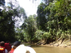 sur la rivière Cuyabeno