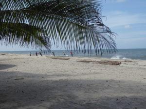 la pêche au filet à partir de la plage