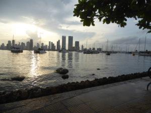 le port de plaisance au coucher du soleil