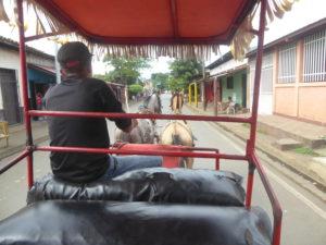 taxi cheval.