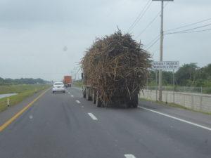 transport aussi en camion ( avec une belle hauteur de chargement )