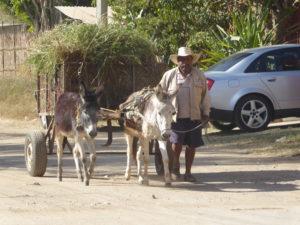 dans la rue à El Tule