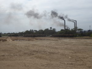 usine de transformation de canne à sucre