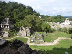 du haut du temple de la croix : vue sur le site et la jungle