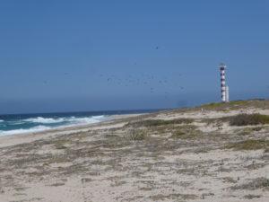 phare de Punta Arena